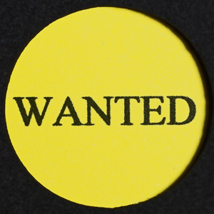 Coin Wanted 300